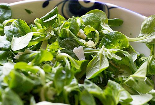 Feldsalat med Persille og Parmesan