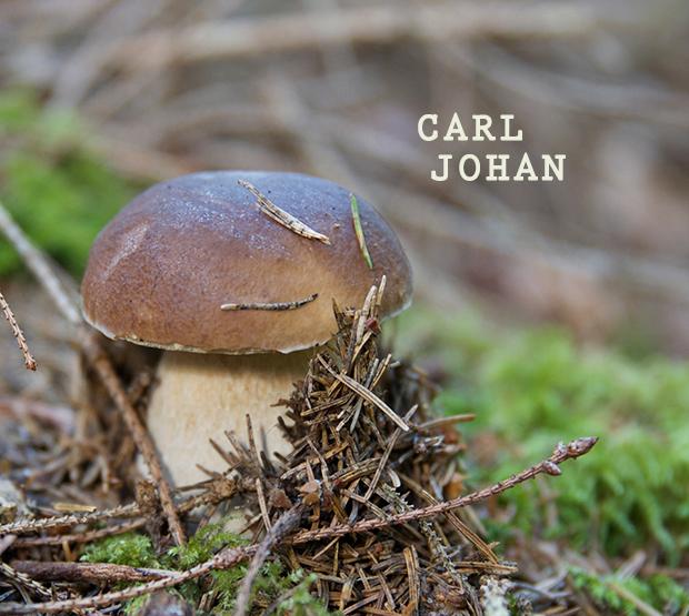 carl-johan
